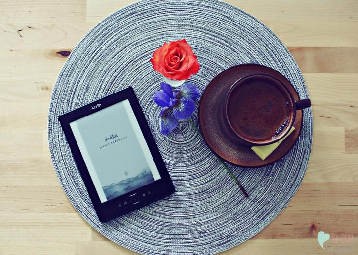 Kindle vs Książki